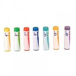 Gelsemium globules 4g