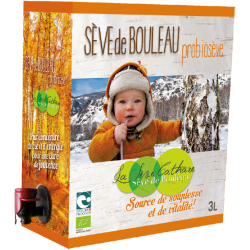 SEVE DE BOULEAU PROBIOSEVE 3L SEVE CA